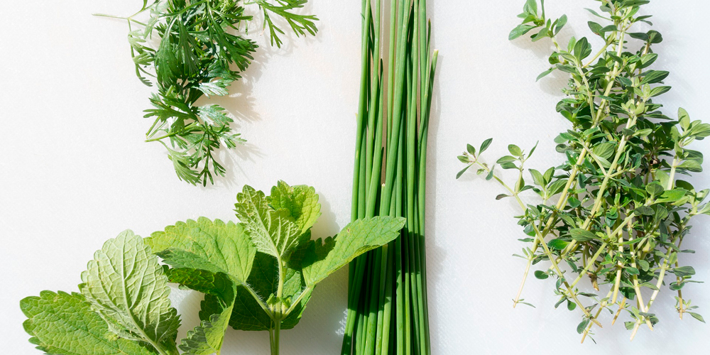 Especias de cocina que puedes cultivar en casa