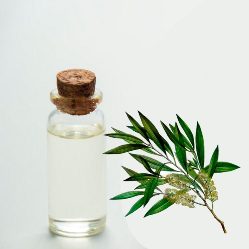 Para qué sirve el aceite del árbol de té. 22 increíbles usos del árbol de los 1000 remedios