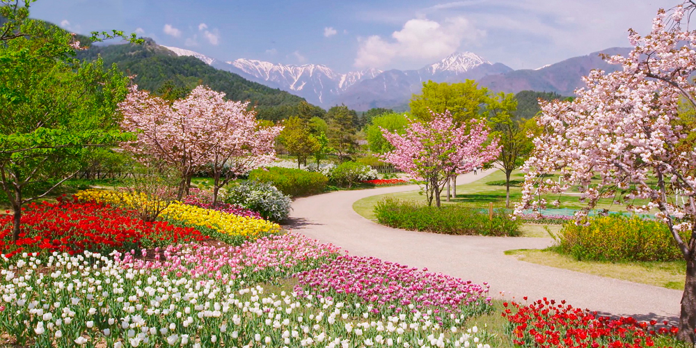 plantas que provocan alergia al polen