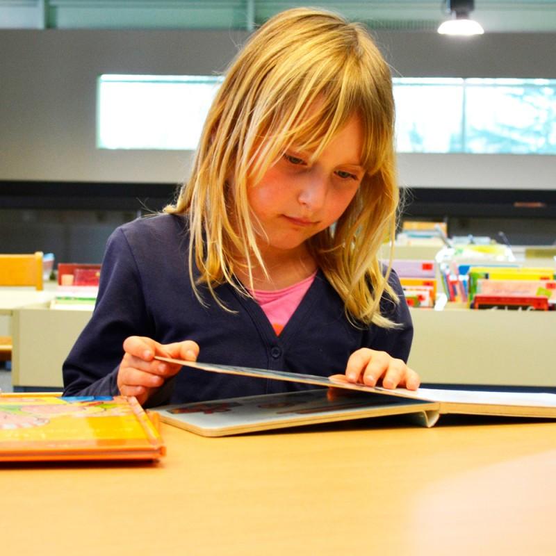 Cómo hacer un trabajo de investigación en educación primaria