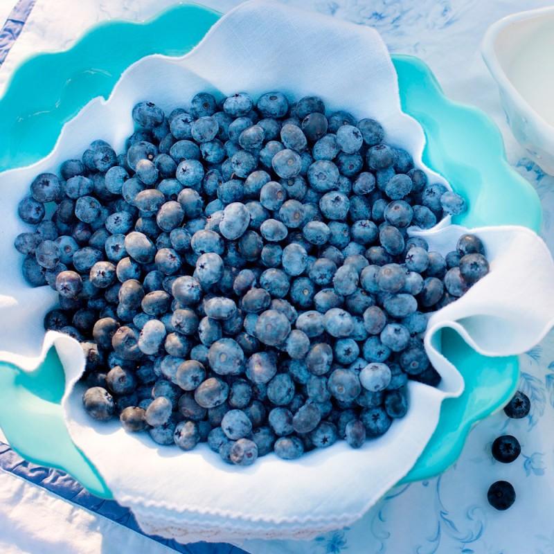 Cuáles son los increíbles beneficios de los arándanos: una superfruta