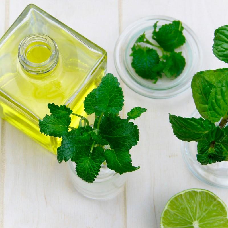 Qué aceites esenciales combaten la sinusitis y la congestión nasal