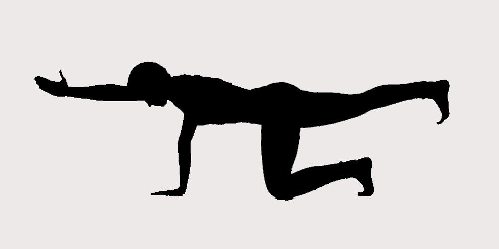 ejercicio para la espalda baja
