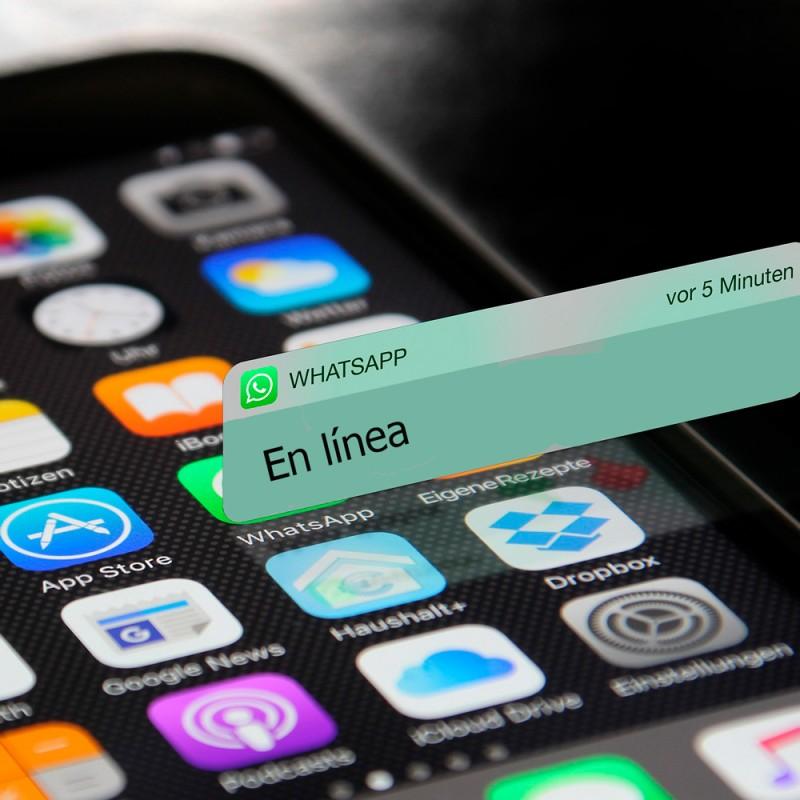 Cómo no aparecer en línea en WhatsApp para proteger tu privacidad