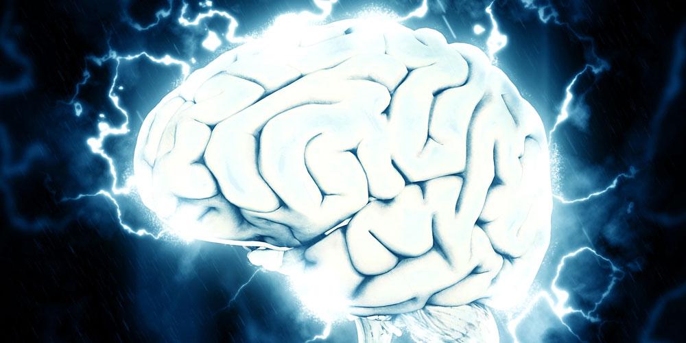 El cerebro tras la muerte