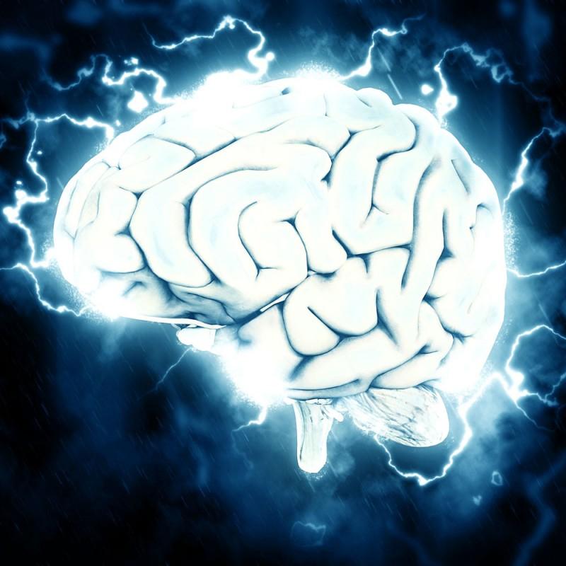 Qué le ocurre al cerebro después de la muerte