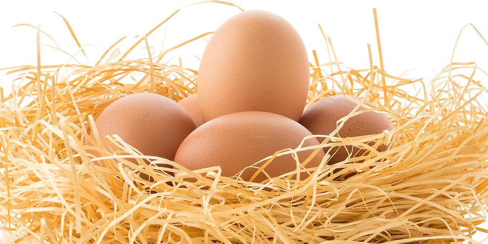 por qué es bueno tomar 2 huevos al día