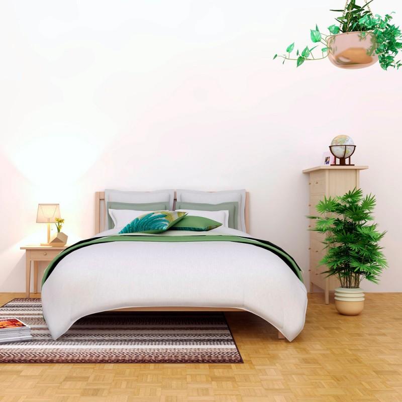 Qué plantas pueden ponerse en el dormitorio para favorecer el descanso