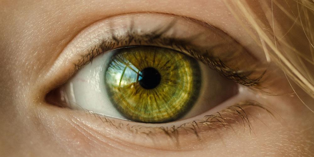 Ojos de color verde