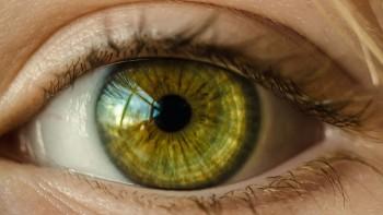Por qué las personas con ojos verdes son únicas. 11 cosas sorprendentes sobre los ojos de color verde