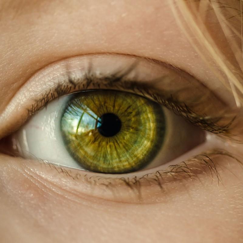 Por qué las personas con ojos verdes son únicas: cosas sorprendentes sobre los ojos de color verde