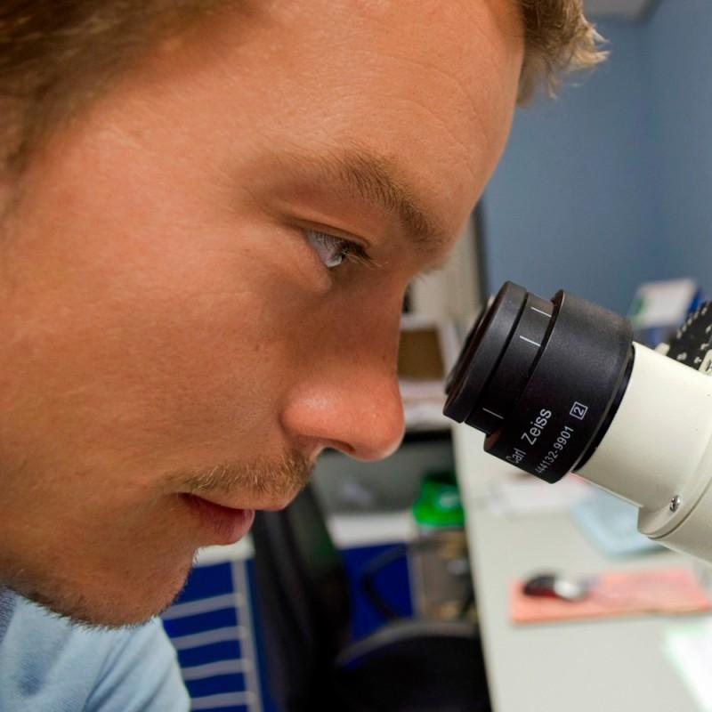 Por qué estudiar biotecnología, una carrera del futuro