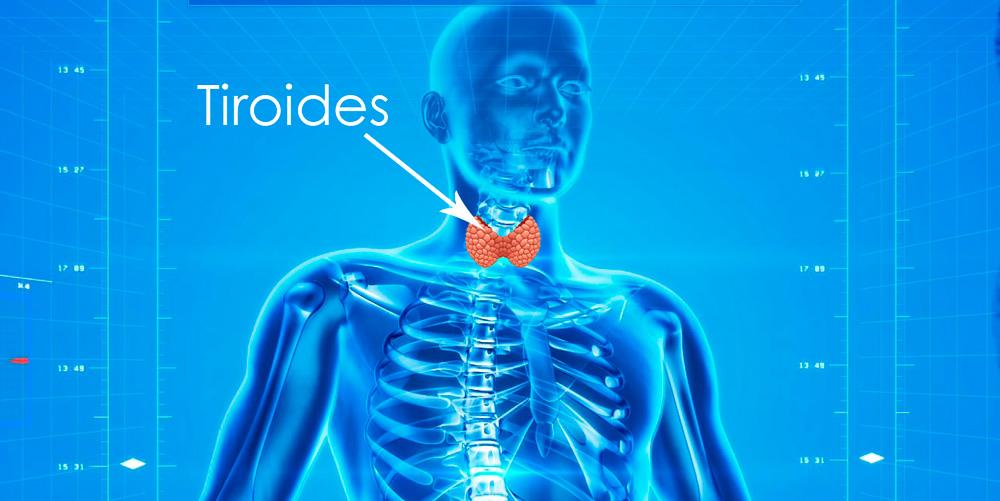 cómo cuidar la tiroides