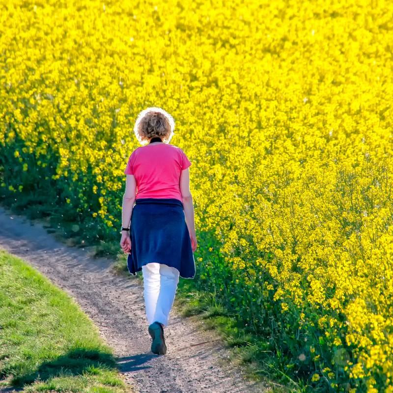 Cuánto tiempo caminar cada día para perder peso