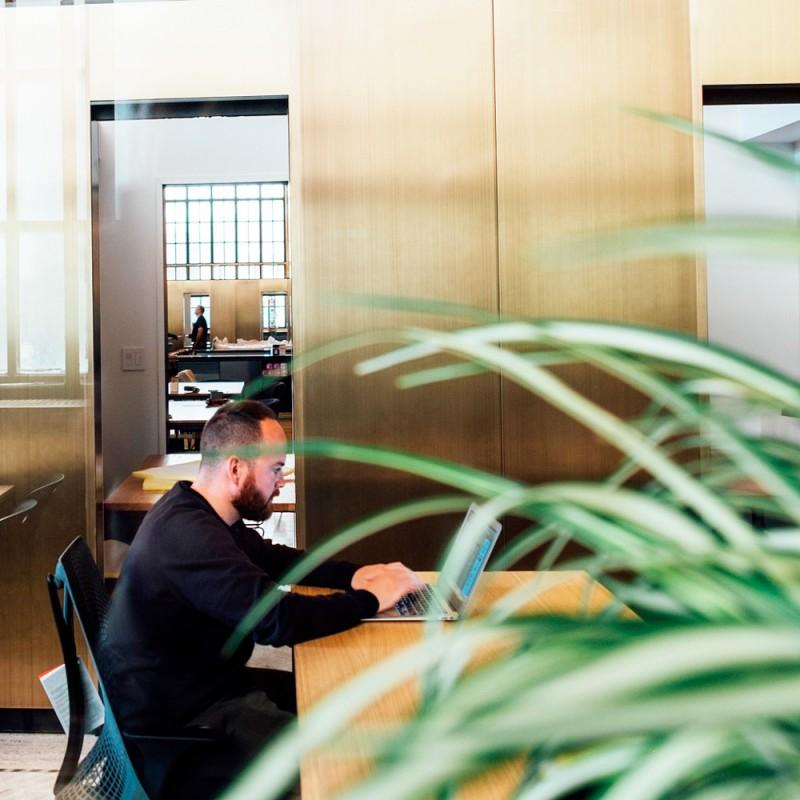 Por qué es bueno decorar con plantas la oficina