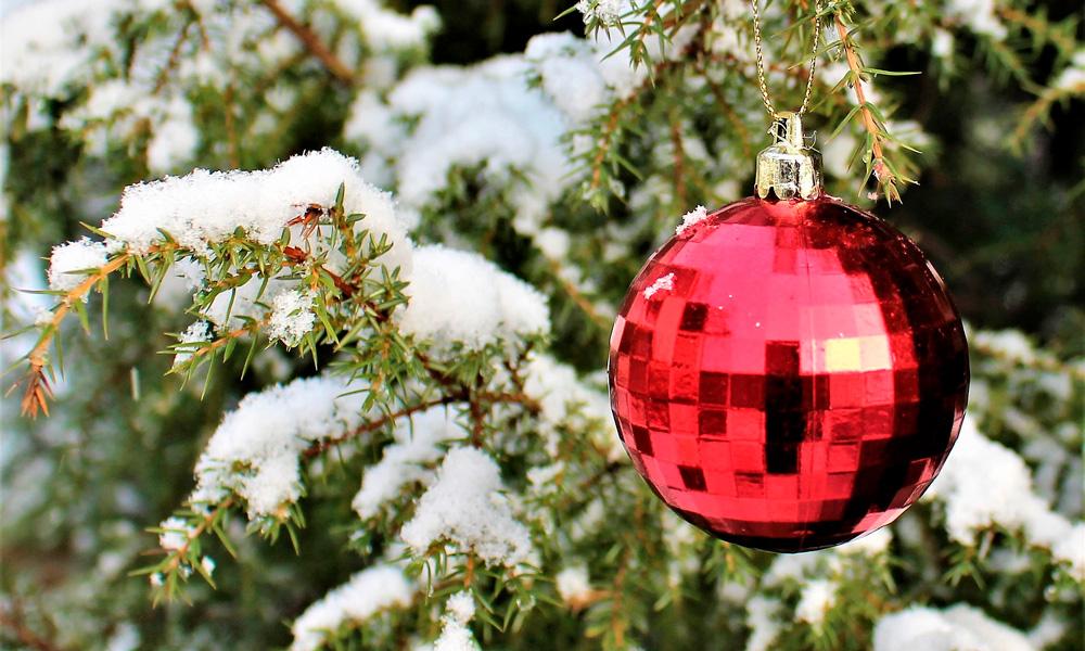 decorar el jardín en navidad