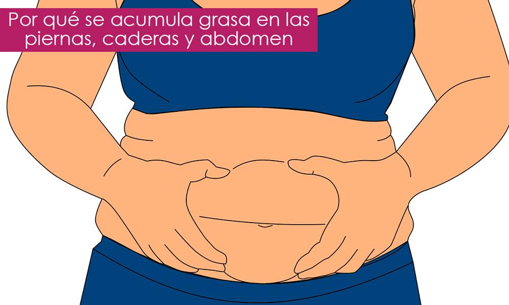 acumulación de grasa en el cuerpo