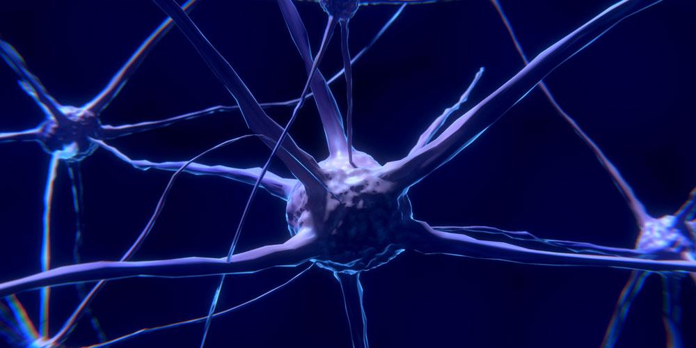 Qué es la serotonina y cómo actúa en cuerpo y mente