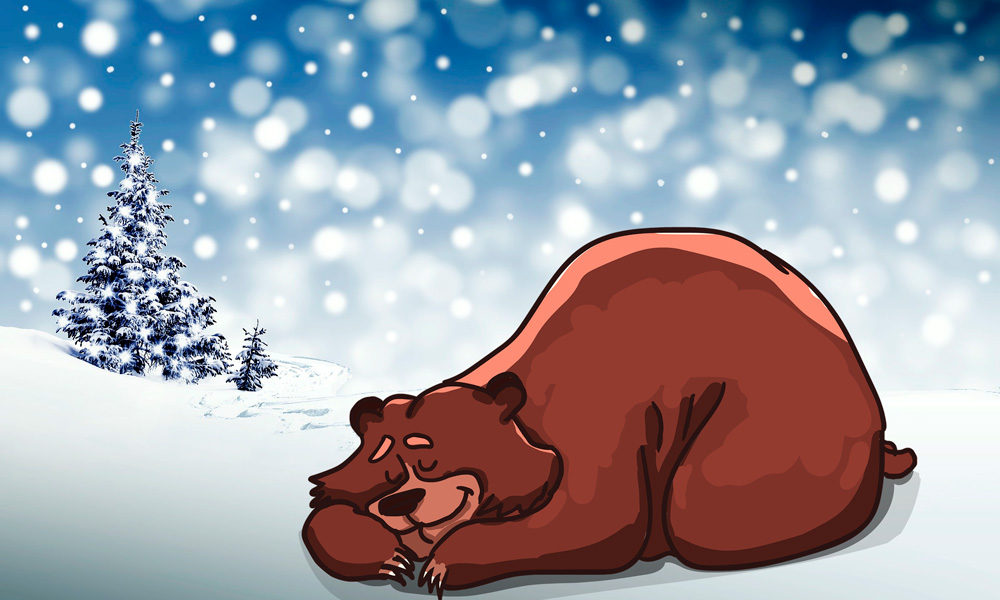 que animales hibernan