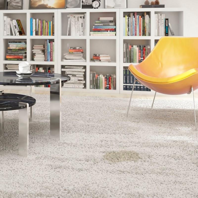 Cómo limpiar moquetas y alfombras de la casa como un profesional