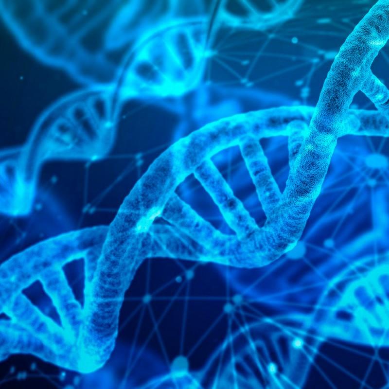 19 preguntas de Biología (con respuestas) para poner a prueba tus conocimientos