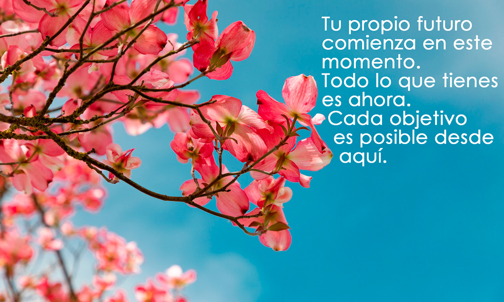 frases del libro Tao Te Ching