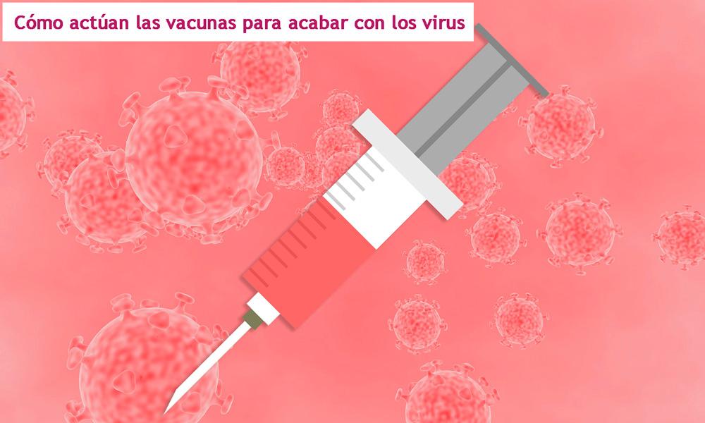 así actúan las vacunas. Tipos de vacunas