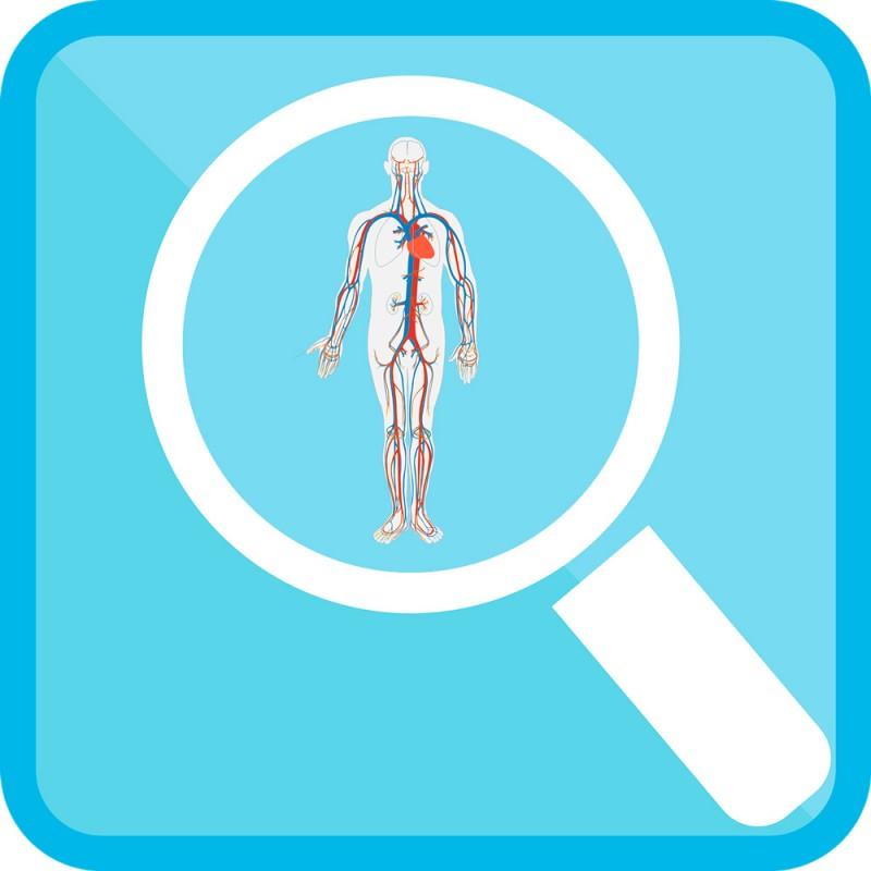 54 sorprendentes curiosidades sobre el cuerpo humano que desconoces