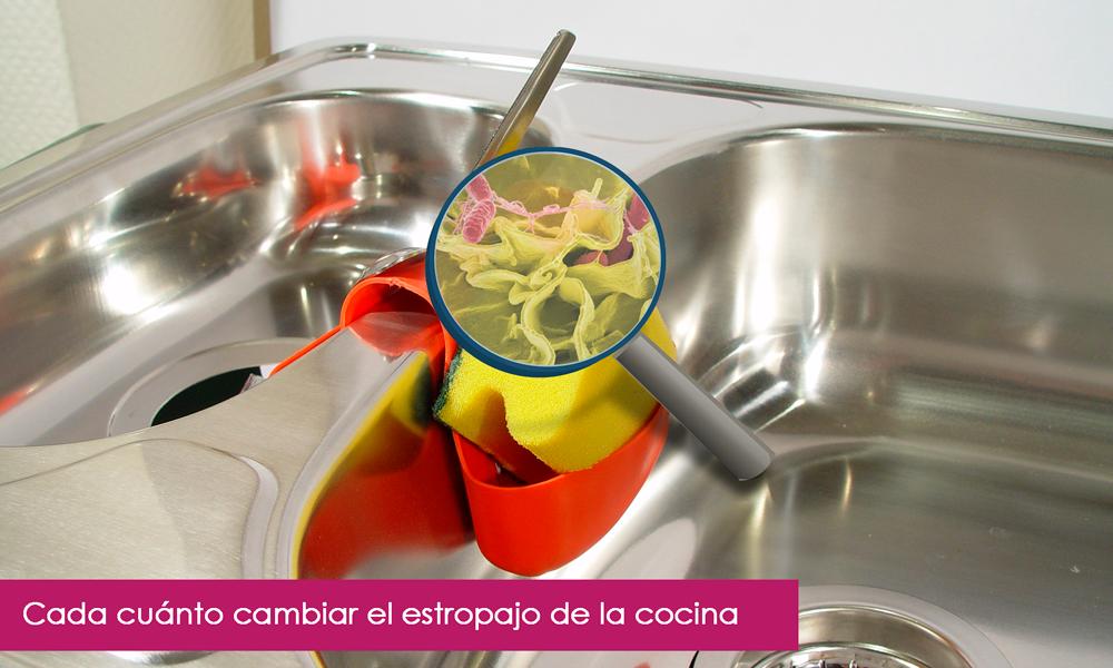 cada cuánto se debe cambiar el estropajo de cocina
