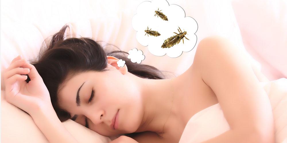 soñar con piojos o con matar piojos