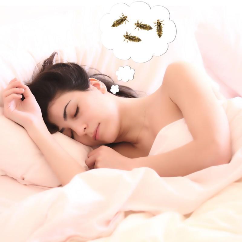 Qué significa soñar con piojos o con matarlos. Interpretación de los sueños
