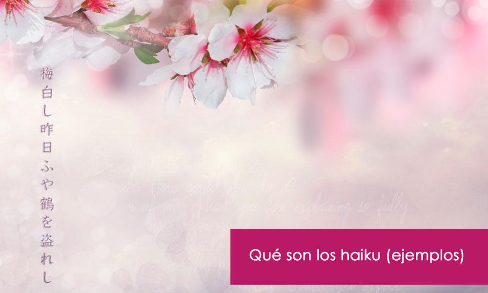 qué es un haiku