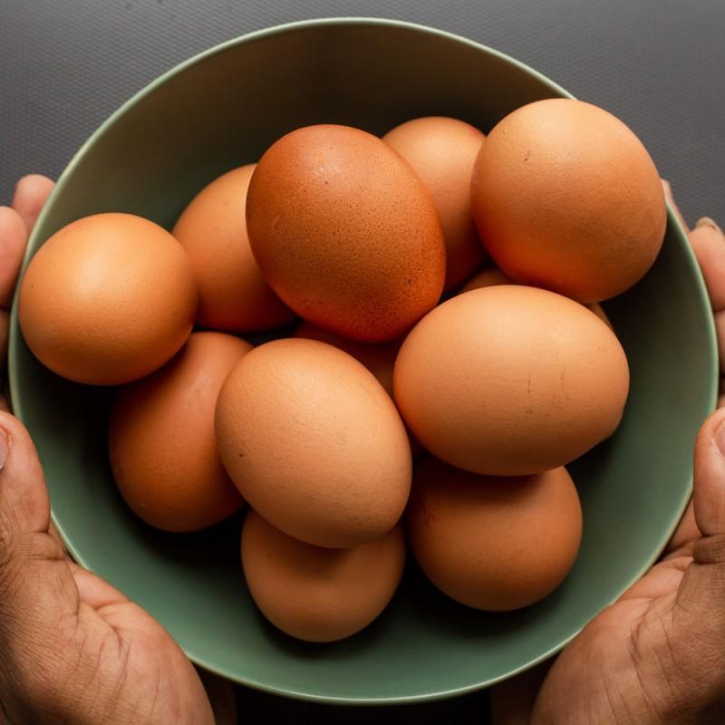 Cómo saber si un huevo está malo o en buen estado