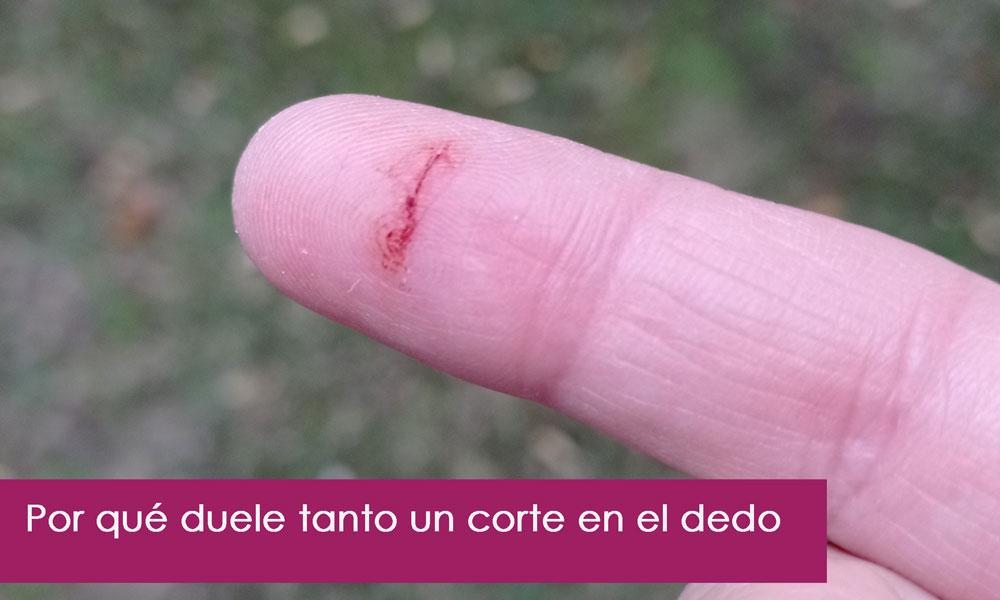 por qué duele tanto un corte en el dedo por papel