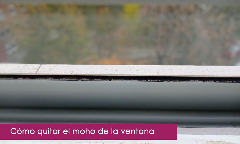 Cómo acabar con el moho de las ventanas