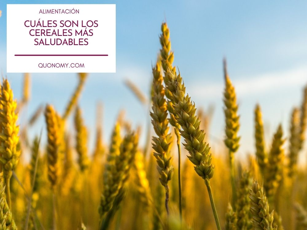 los cereales más saludables