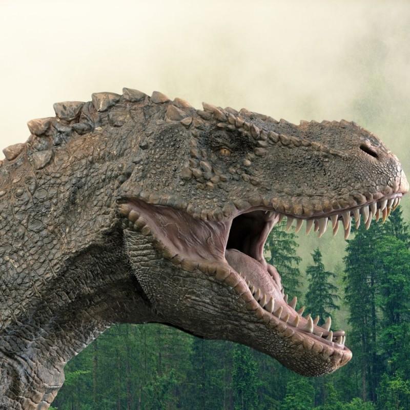 16 preguntas sobre los dinosaurios: ¿cuánto sabes sobre los grandes saurios?