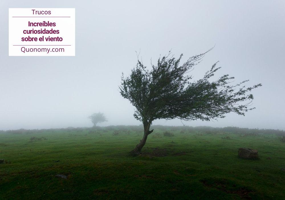 curiosidades sobre el viento