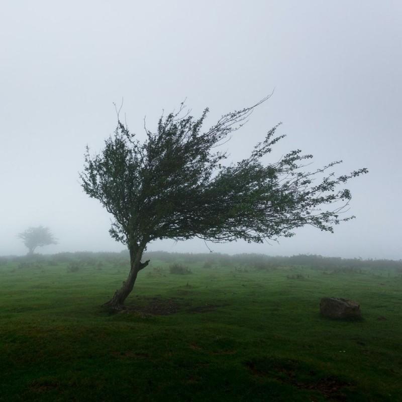 18 fascinantes curiosidades sobre el viento