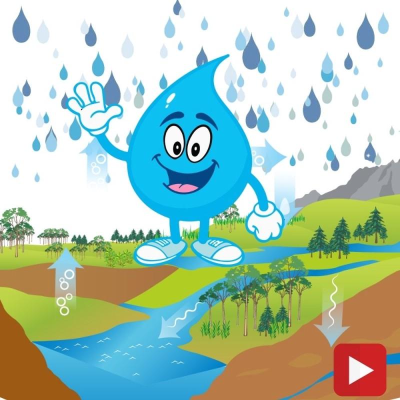 El ciclo del agua: Vídeo educativo para niños