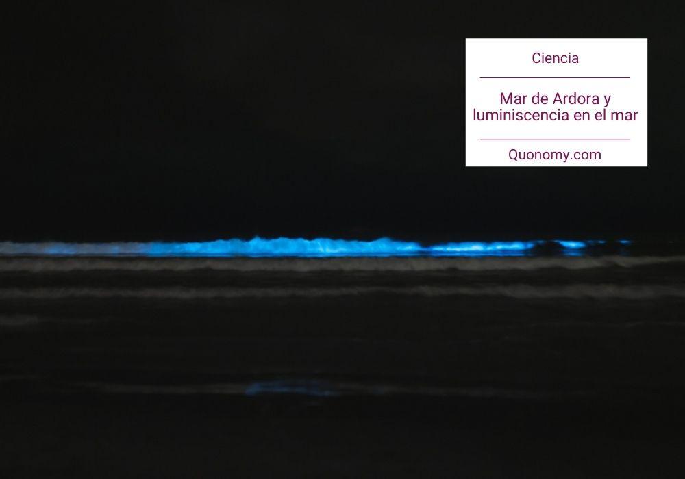 Mar de Ardora y bioluminiscencia