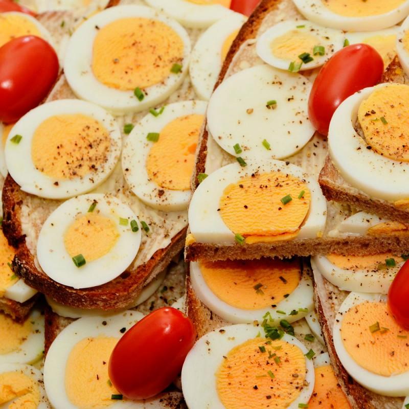 Cuáles son los alimentos más ricos en proteínas. Comidas con proteínas