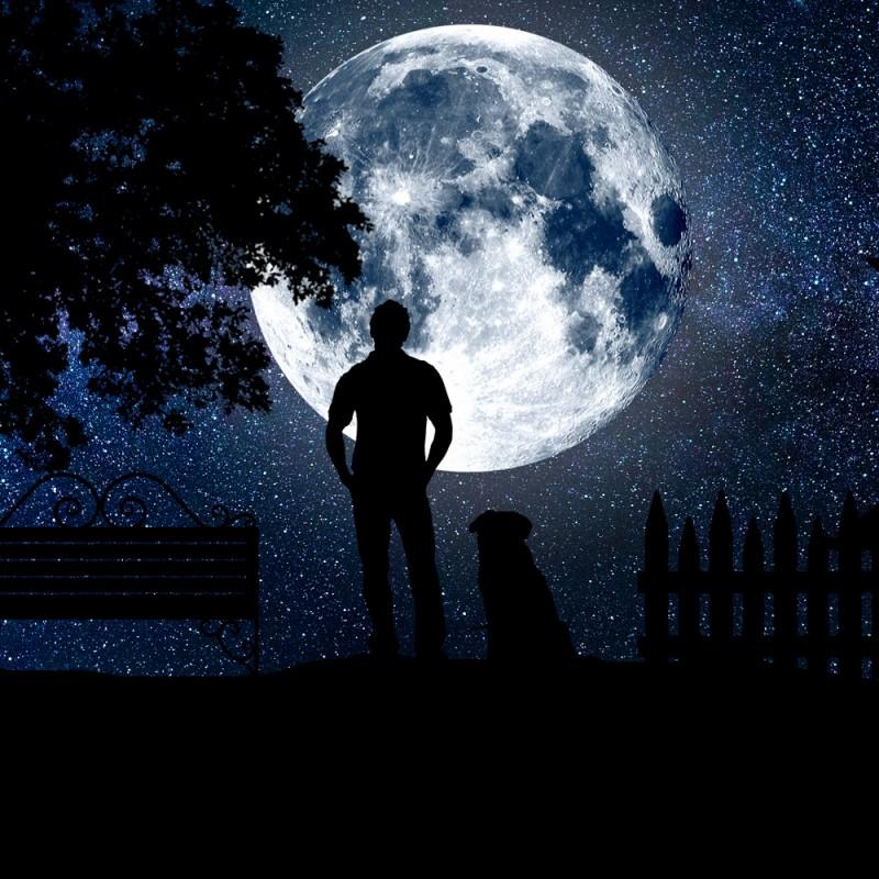 Calendario astronómico 2019: fases lunares, eclipses, conjunciones de planetas y lluvias de estrellas
