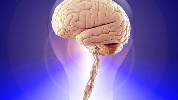 Tipos de memoria: la capacidad para recordar en el ser humano