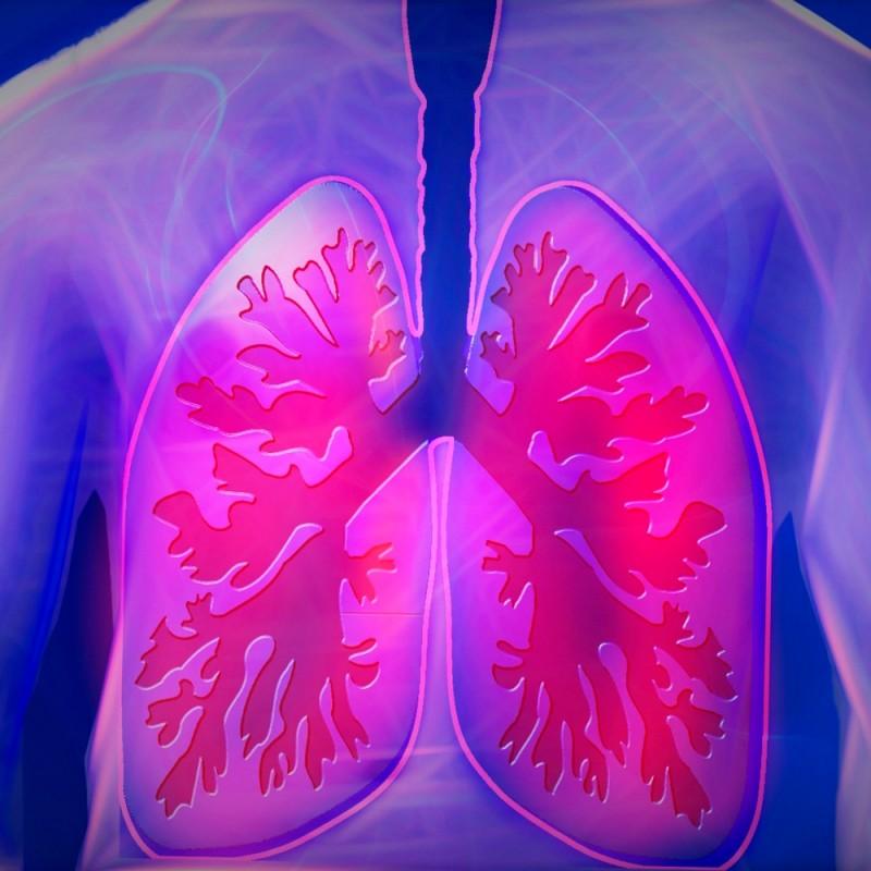 Cómo funcionan los pulmones y qué hacer para mejorar la capacidad pulmonar